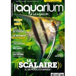 Aquarium à la maison n° 132...