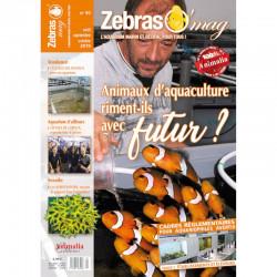 ZebrasO'mag n° 50 aout /...