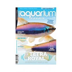 Aquarium à la maison n° 135...