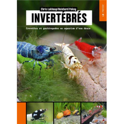 Invertébrés - Crevettes et...