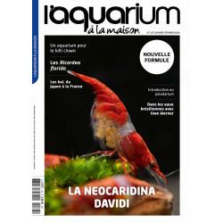 Aquarium à la maison n° 137...