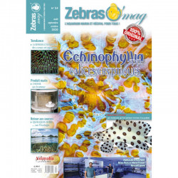ZebrasO'mag n° 54 Août /...