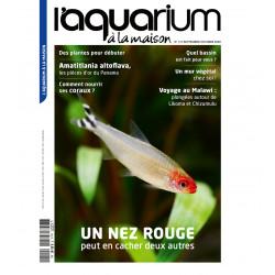 Aquarium à la maison n° 141...