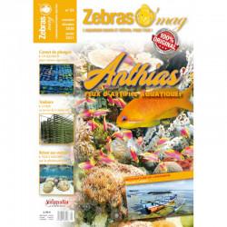 ZebrasO'mag n° 55 Novembre...