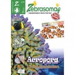 ZebrasO'mag n° 57 Mai -...