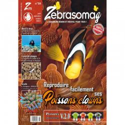 ZebrasO'mag n° 58 Août -...