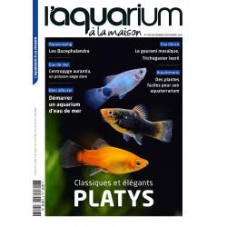 Aquarium à la maison n° 148...