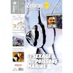 ZebrasO'mag n° 46...