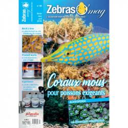 ZebrasO'mag n° 48...